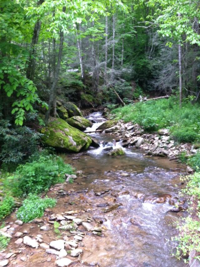 Mtn stream 145