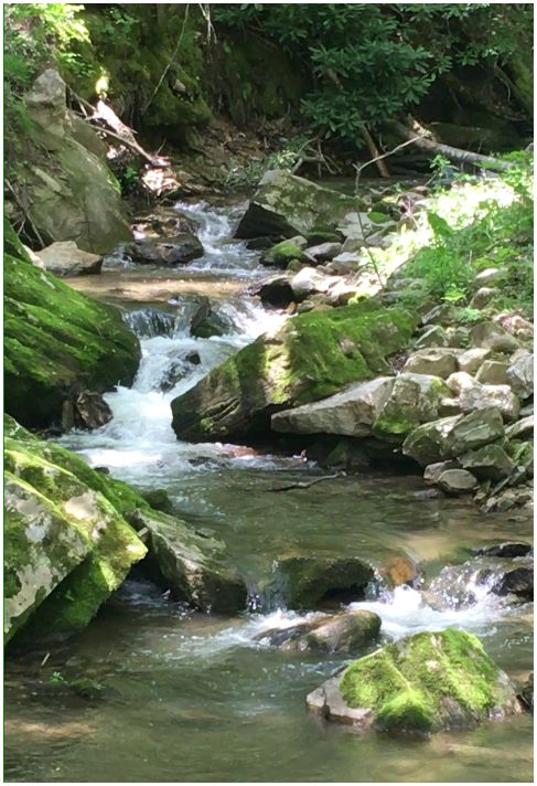nc-mountain-stream